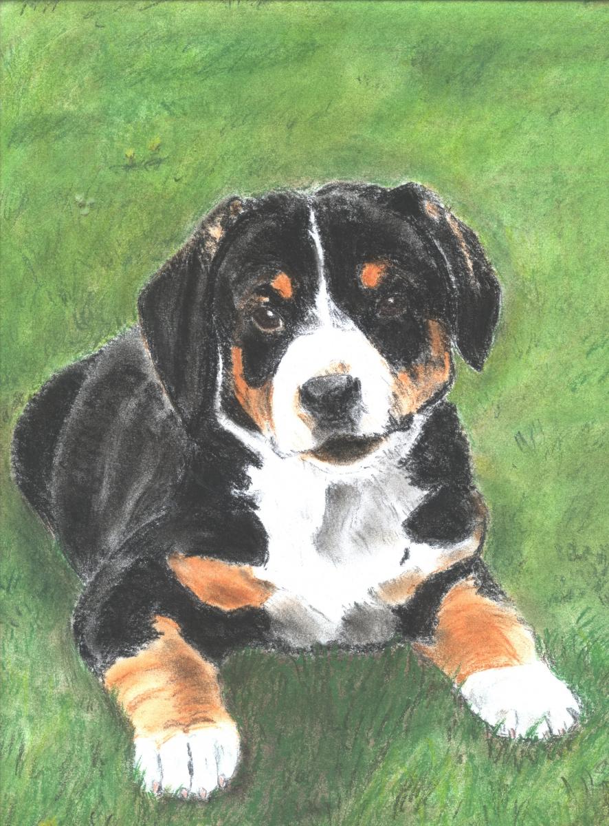 hond-12-juni-2005