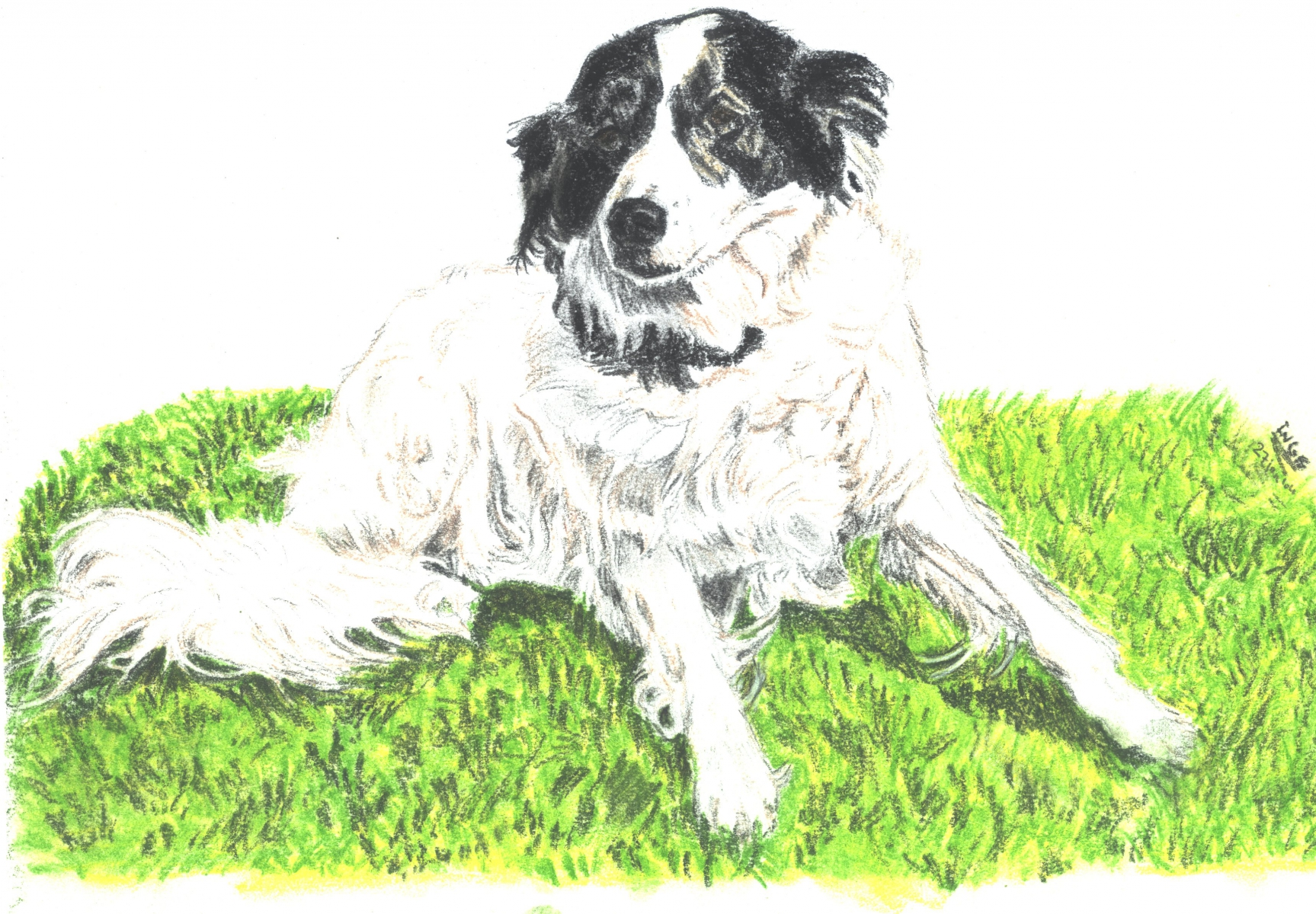 hond-roerdink